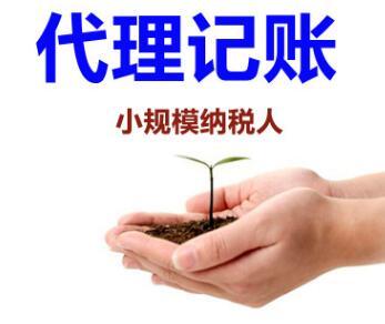 【】深圳龙华财务公司,代理记账
